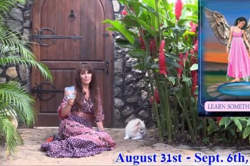 angel-messages-august-31-september-6-2015_OMTimes